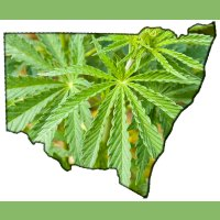 Medical marijuana - New South Wales