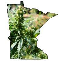 Minnesota medical marijuana program
