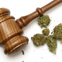 Canada medical marijuana court case