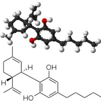 Cannabidiol research regulations