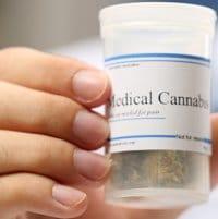 Cannabis Collaboration - Tasmania And New South Wales