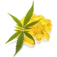 Medical cannabis perceptions