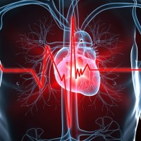 Cannabis and heart attack survival