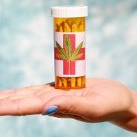 Medicinal marijuana in Macedonia