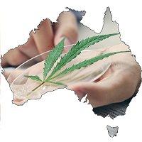 Australia ODC Cannabis Information