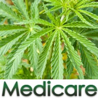 Medical marijuana - Medicare impacts