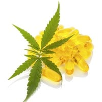 Queensland and New South Wales Medical Cannabis
