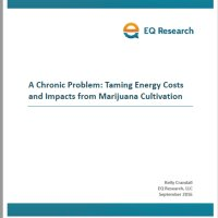 Cannabis industry and energy - white paper