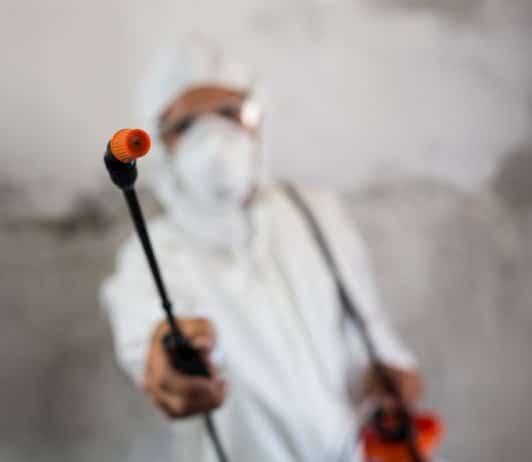 Pesticides in medical marijuana