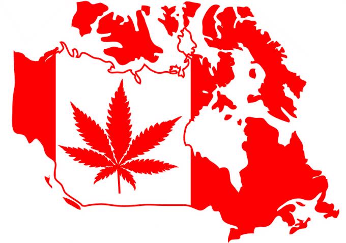 Medicinal marijuana - Canadian veterans