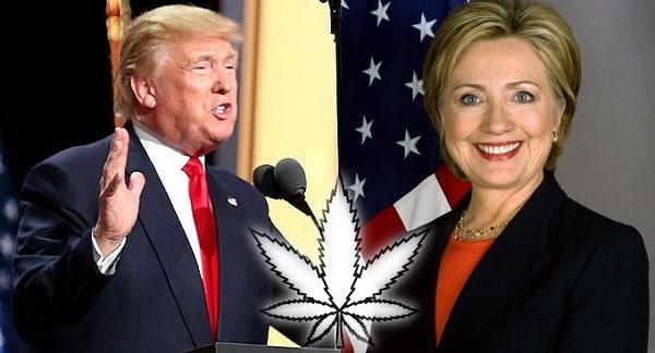 Hillary Clinton and Donald Trump - Medicinal marijuana