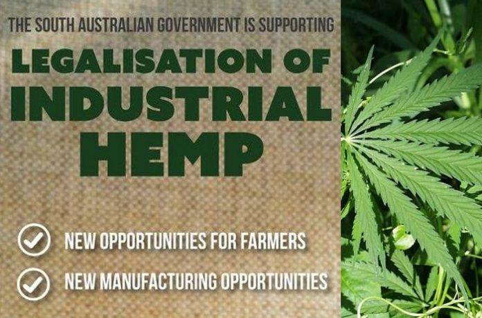 Industrial Hemp in South Australia