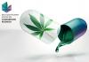 Multidisciplinary Center on Cannabinoid Research