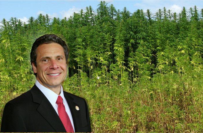 New York Legislation To Treat Industrial Hemp As An Agricultural Crop