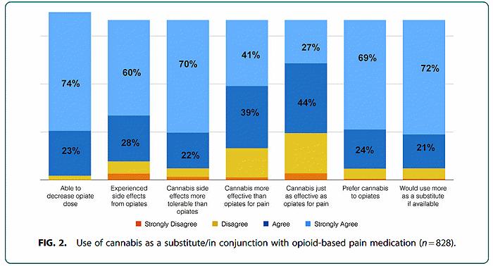 Medicinal marijuana survey