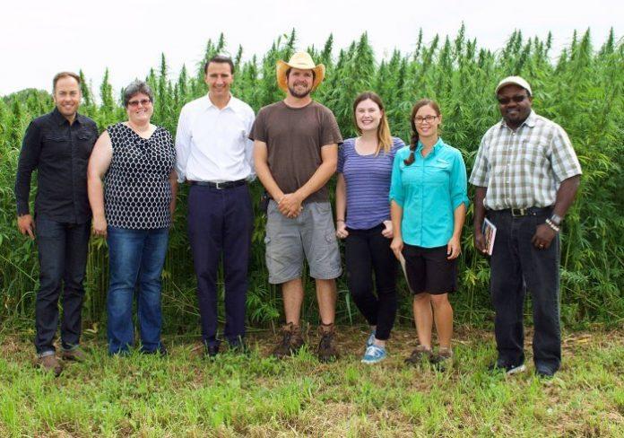 Industrial hemp trial in Pennsylvania