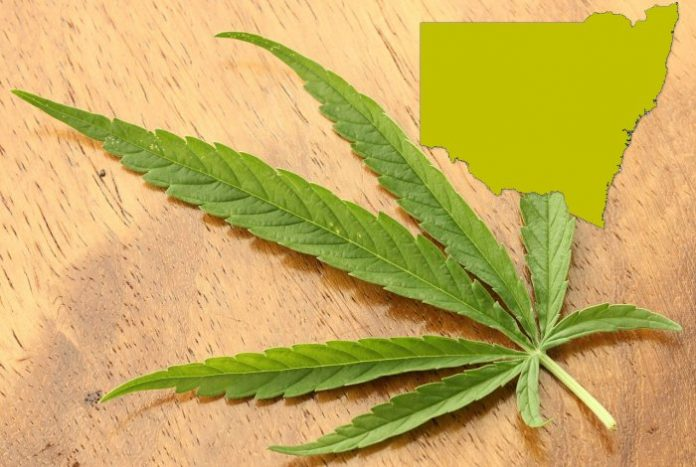 Medical marijuana in New South Wales