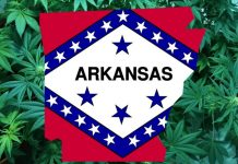 Image result for arkansas flag
