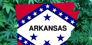 Medicinal marijuana in Arkansas