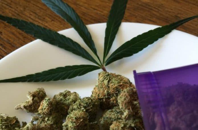 Mormons and medicinal marijuana