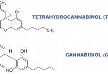 THC + CBD study
