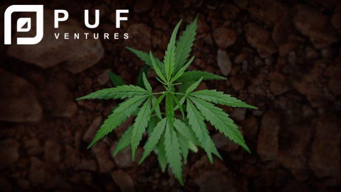 PUF Ventures Australia