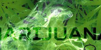 Cannabis overdose death