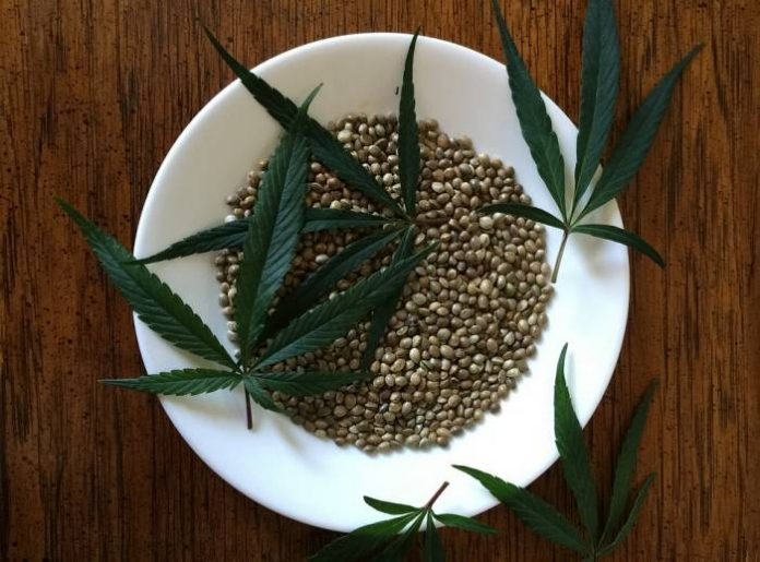 Hemp seed foods now available in Australia