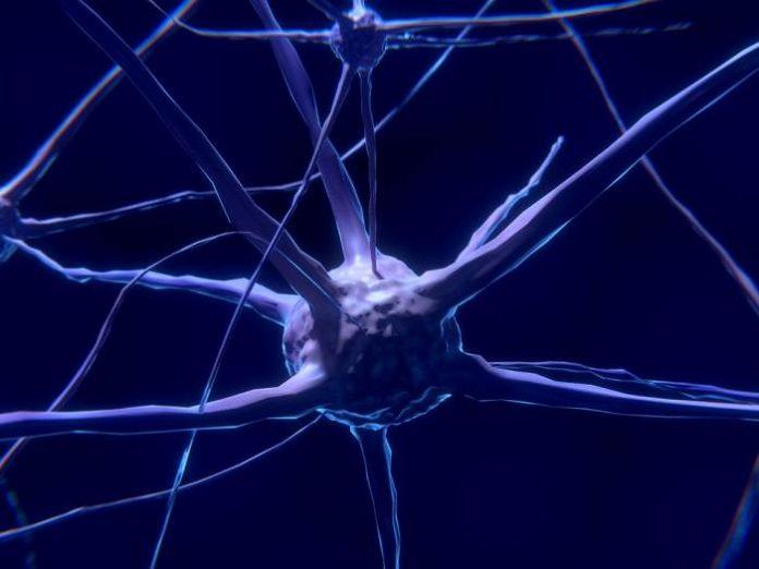 Parkinson's Disease and medical cannabis