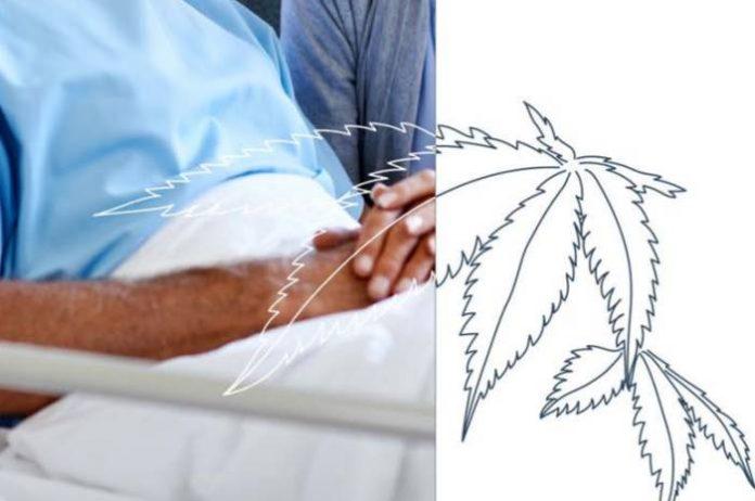 Australian medical cannabis clinical guides
