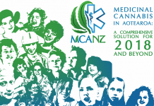 medicinal marijuana policy in new zealand