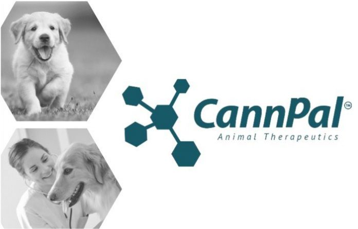 CannPal cannabis trial - dogs