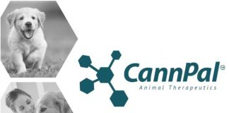 CannPal - medical cannabis for pets