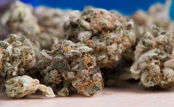 Pennsylvania medicinal marijuana
