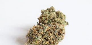 Recreational marijuana to kill medical cannabis?