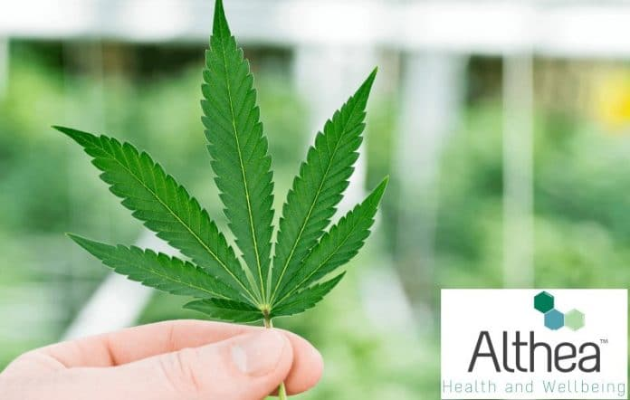 Althea Group Holdings Limited - ASX:AGH