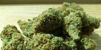 Medical cannabis tax - Canada
