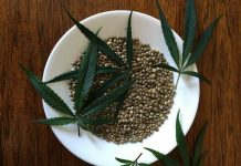 Hempseed food in New Zealand