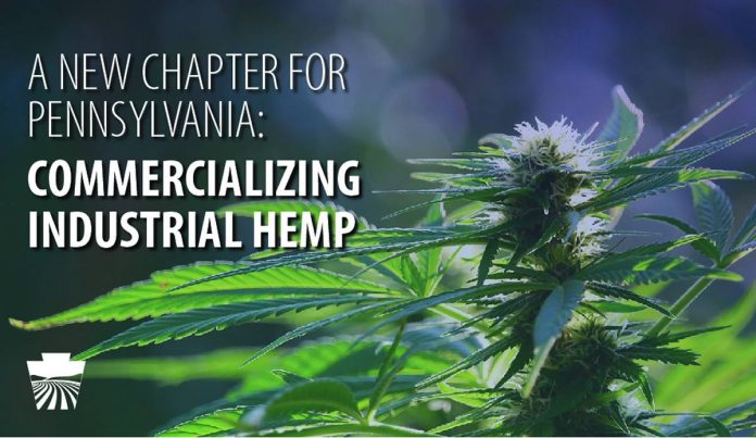Industrial hemp in Pennsylvanian