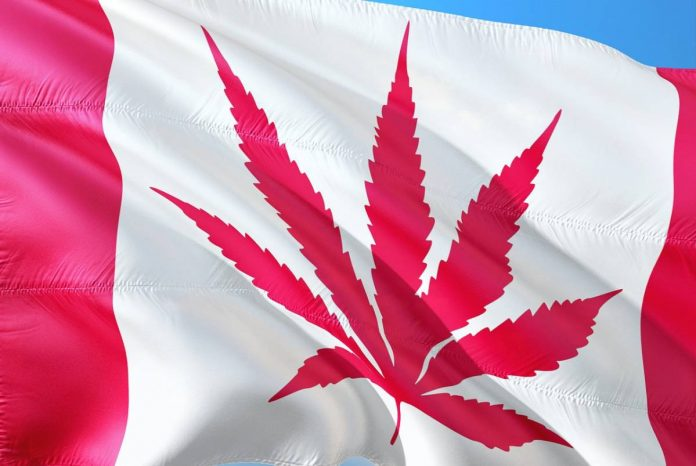 Medicinal cannabis sales in Canada