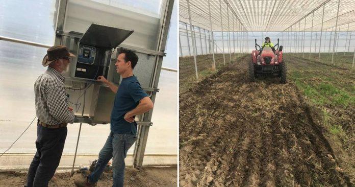Wide Open Agriculture - Industrial Hemp