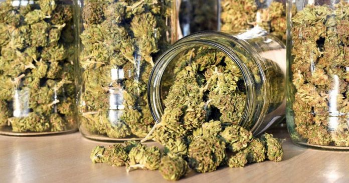 Medical cannabis in New Mexico