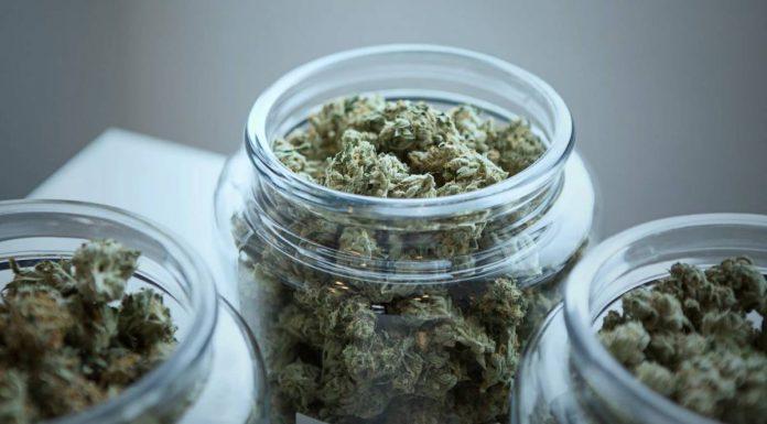 Ohio medical marijuana statistics