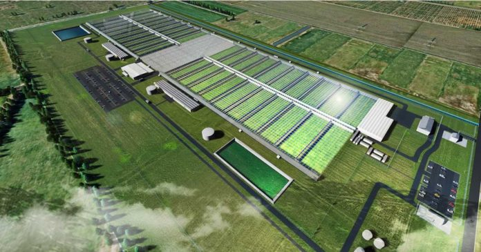 Cannatrek's proposed medical cannabis facility in Victoria