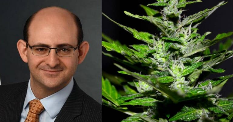 USA FDA Excited About Cannabidiol, But..