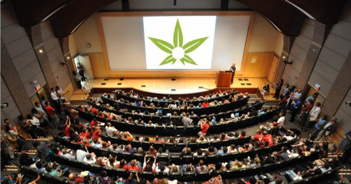 Medical cannabis information sessions