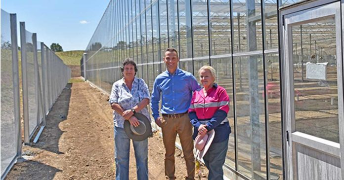 Medical cannabis production facility in Lismore