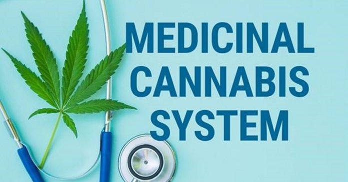 Australian Medicinal Cananbis System Senate inquiry