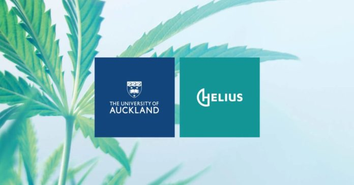 Medical cannabis in New Zealand