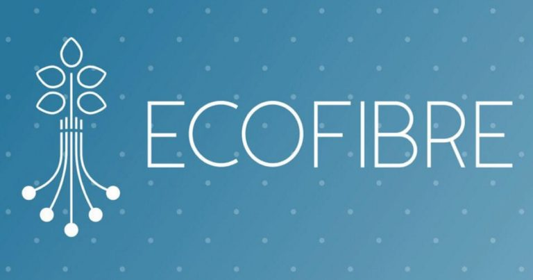 Ecofibre Share Price Cops A Caning